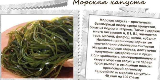 Список продуктов кормящей маме: что можно кушать в период гв, что кушать не рекомендуется