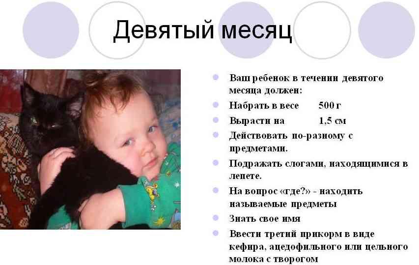Развитие ребенка в 6 месяцев: что должен уметь, рост, вес, игры и уход