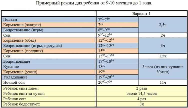 Ребенку 8 месяцев: развитие, рост, вес, питание, режим дня