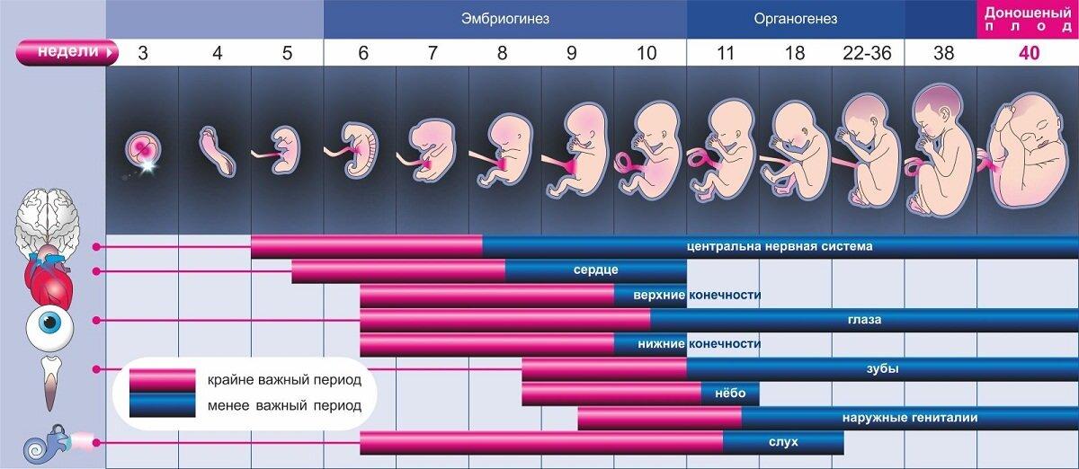28 неделя беременности - что происходит с малышом и мамой