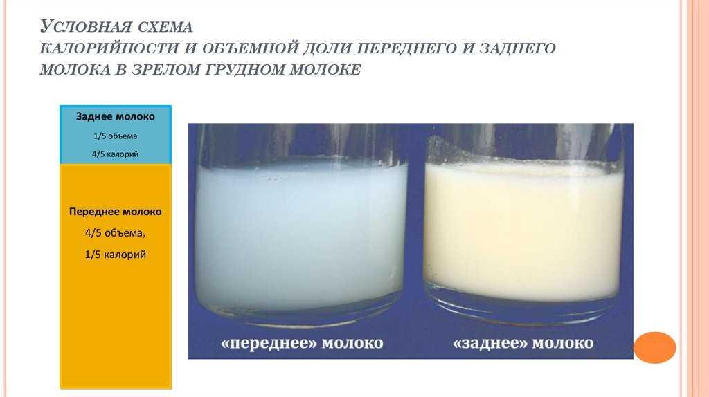 Мастит, лактостаз, приход молока - чем отличаются и что делать? - проблемы гв