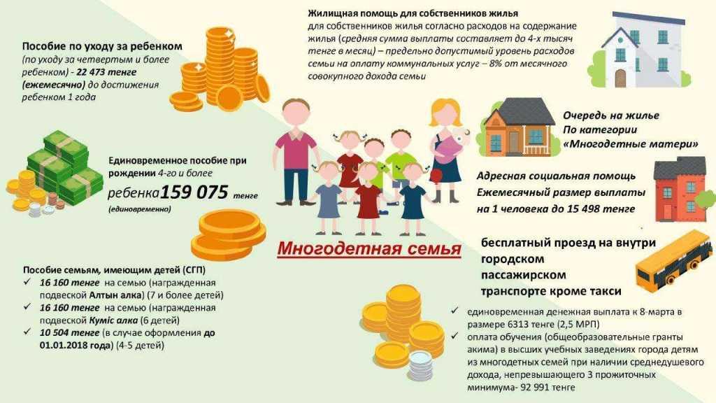 Какие пособия положены семье, если в ней один ребенок: 5 видов выплат для семей с одним ребенком