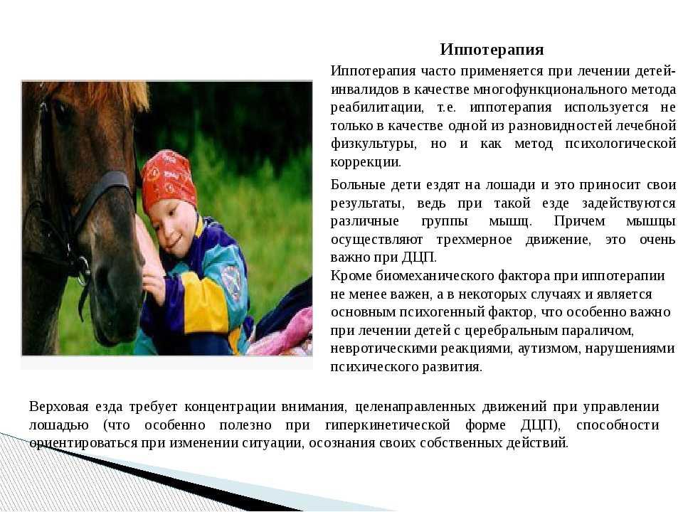 Иппотерапия и лечебная верховая езда – центры реабилитации, конные и конно-спортивные клубы и комплексы в россии, странах снг и дальнем зарубежье (названия, специализация и возможности, адреса, телефоны, цены)