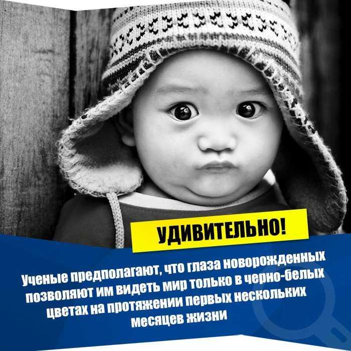 Интересные факты о новорождённых детях - zefirka