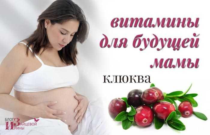 Клюква и клюквенный морс при беременности на ранних и поздних сроках: полезные свойства и противопоказания, отзывы