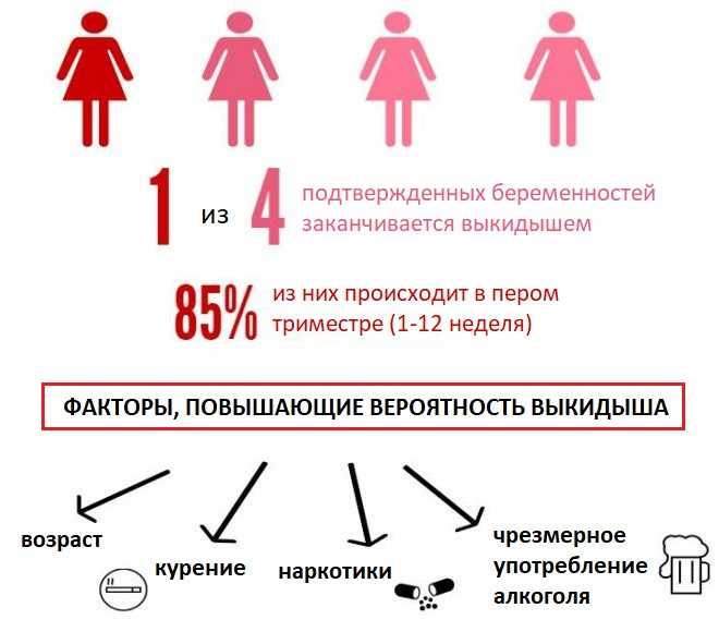 Долгожданная беременность после эко: срок, признаки, тест, триместры