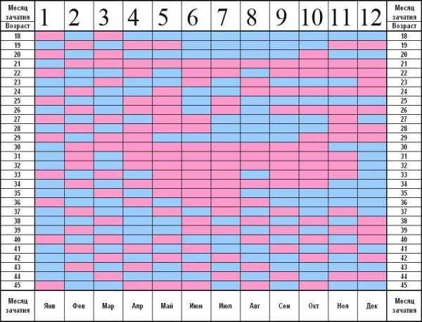На каком сроке можно определить пол ребенка на узи