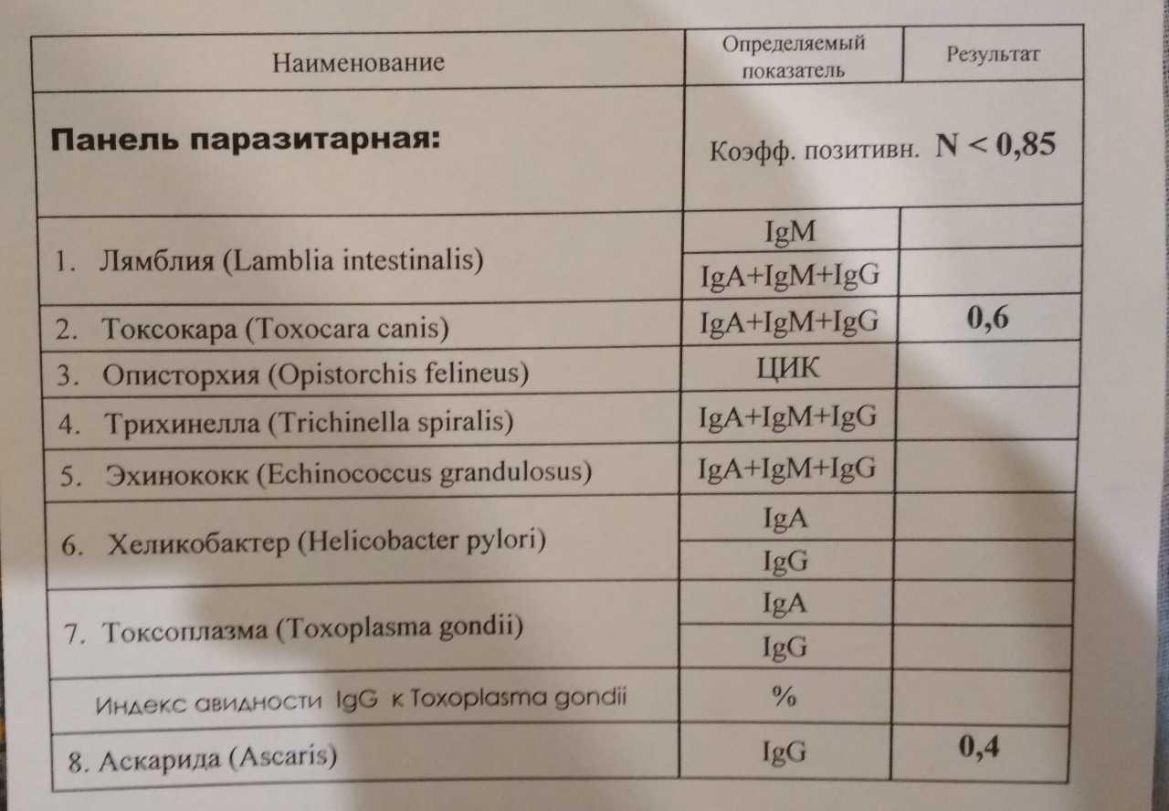 Общий анализ крови при гельминтах у ребенка - все про паразитов