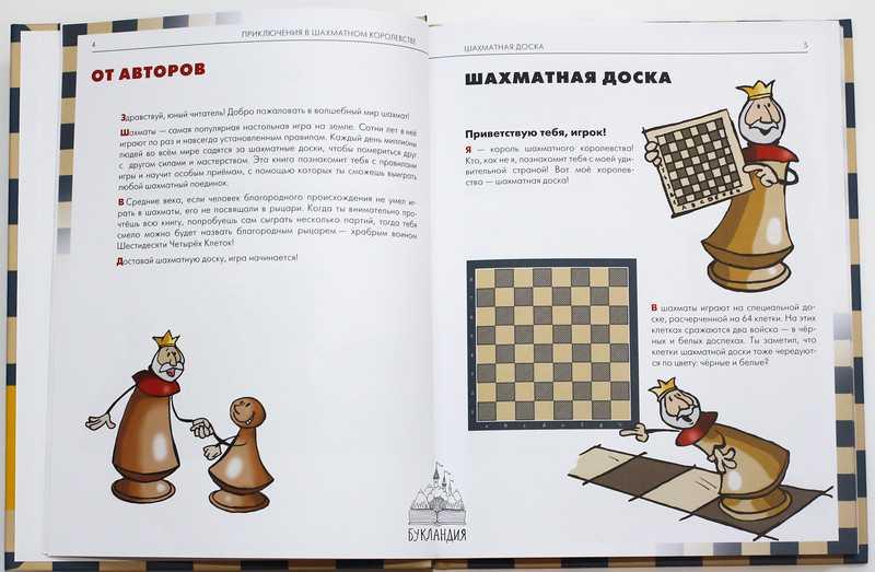 Как научить ребенка играть в шахматы в любом возрасте?