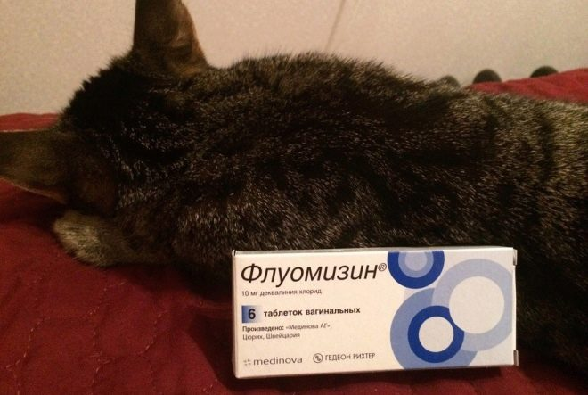 Свечи пимафуцин при беременности: инструкция по применению и противопоказания