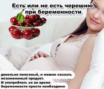 Чернослив при беременности: состав и риски от употребления сухофрукта