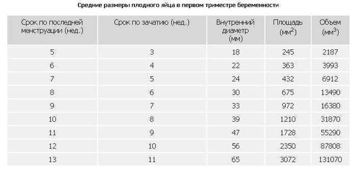 Размеры плодного яйца по неделям беременности в таблице