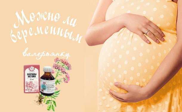 Можно ли пустырник форте беременным?