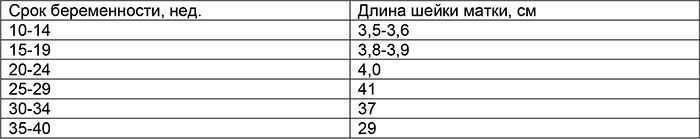 Длина шейки матки при беременности по неделям таблица у повторнородящих