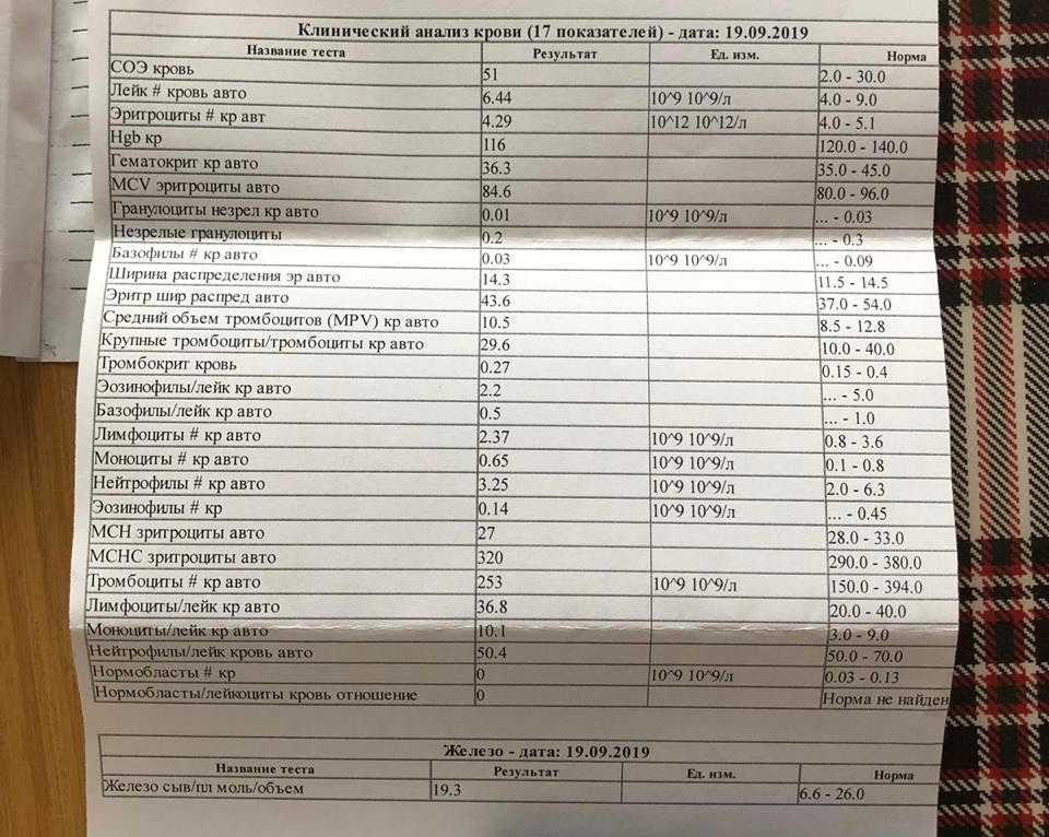Соэ при беременности: норма 1 2 3 триместр, повышенный в крови по неделям
