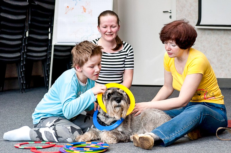 Канистерапия: реабилитация с помощью собак