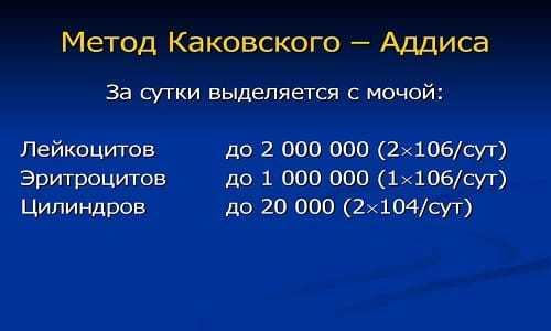 Анализ мочи по аддис-каковскому: что значит, нормы, правила сбора