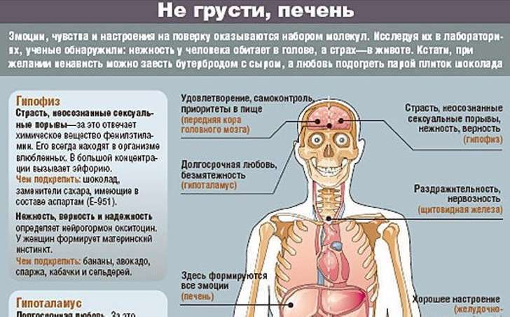 Психосоматические причины болезней печени