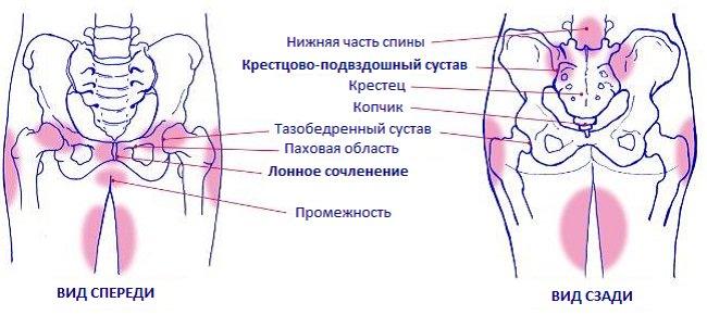 Болят кости при беременности: тазовые, лобковая, в промежности