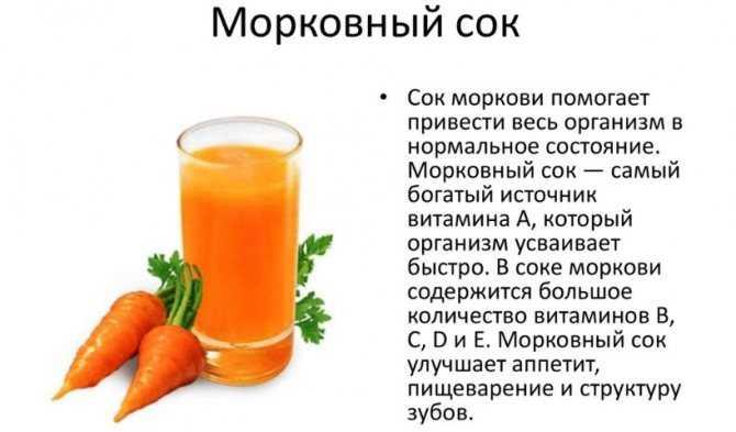 Морковь при беременности: можно ли беременным употреблять в 1, 2, 3 триместрах, какая польза и вред?
