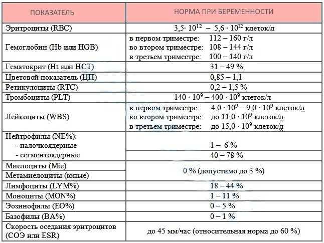 Эритроциты в крови при беременности: норма по триместрам, понижены, повышены