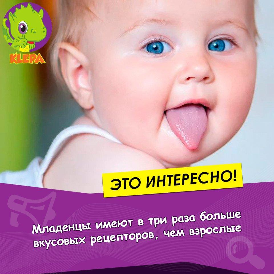 Подборка интересных фактов о новорожденных детях   vivareit