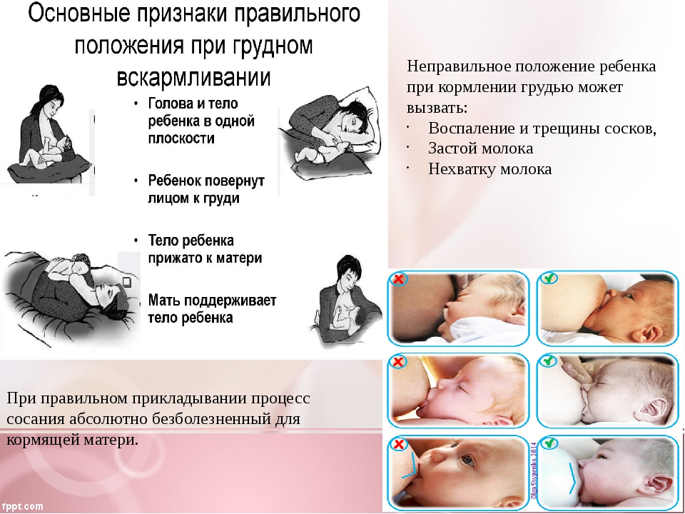 Как подготовить грудь к кормлению?   уроки для мам