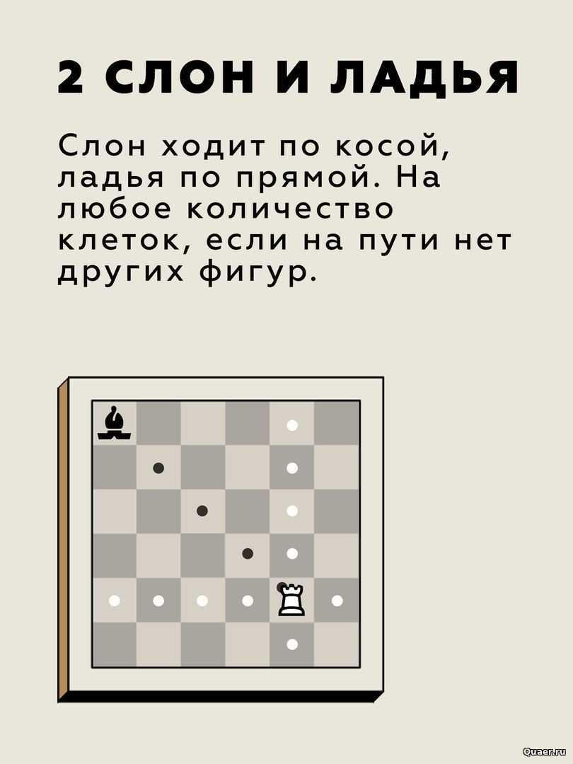 Как научиться играть в шахматы с нуля взрослому, начинающим детям