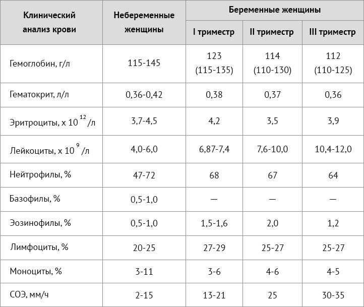 Эритроциты в моче при беременности: норма, причины повышения