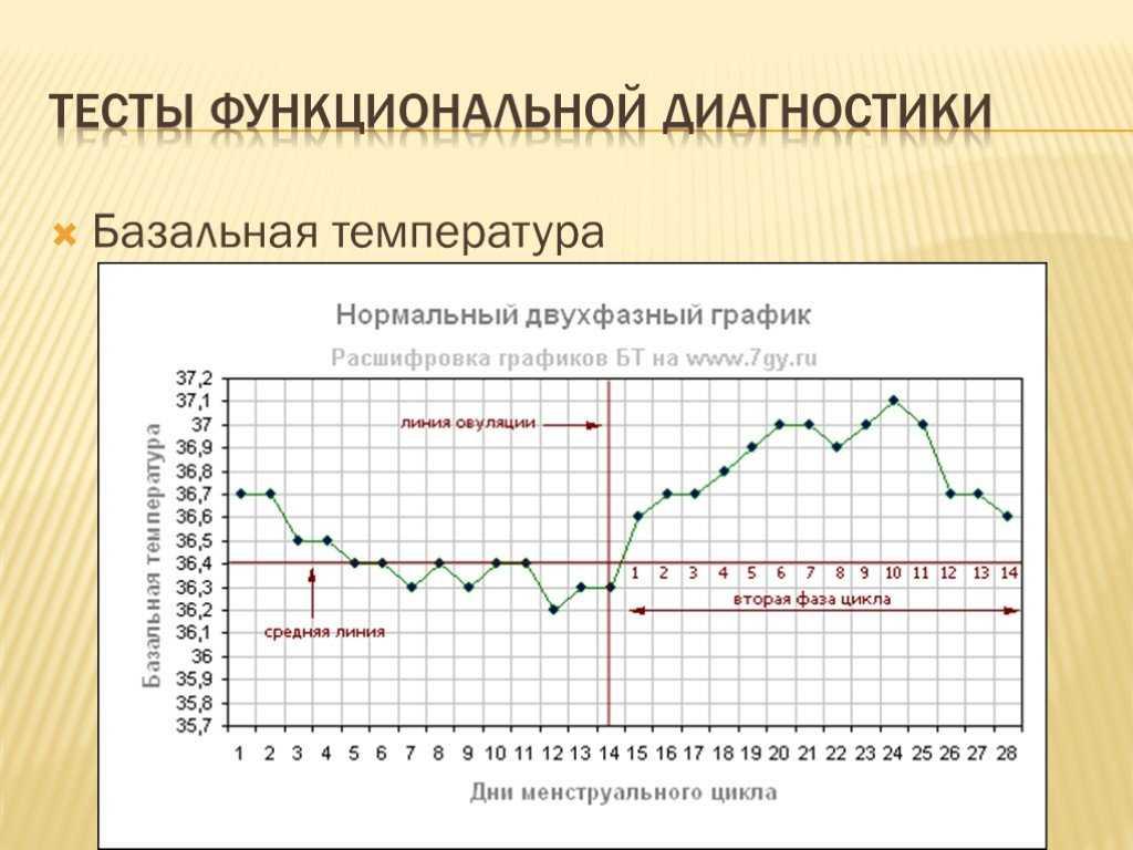 Базальная температура - как узнать о начале овуляции и ранней беременности
