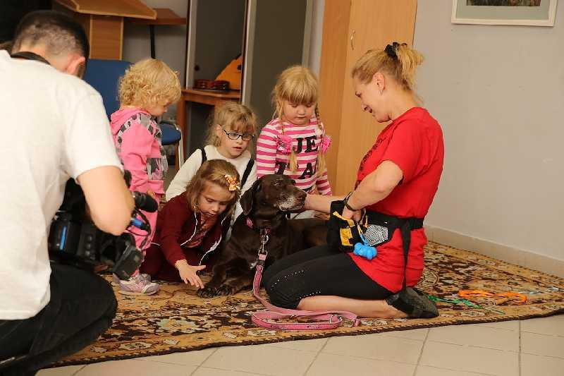 Особый ребенок и собаки. репортаж из центра канис-терапии (+фото) | православие и мир