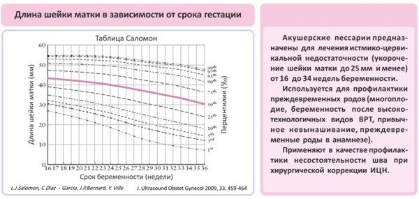 Размеры шейки матки при беременности