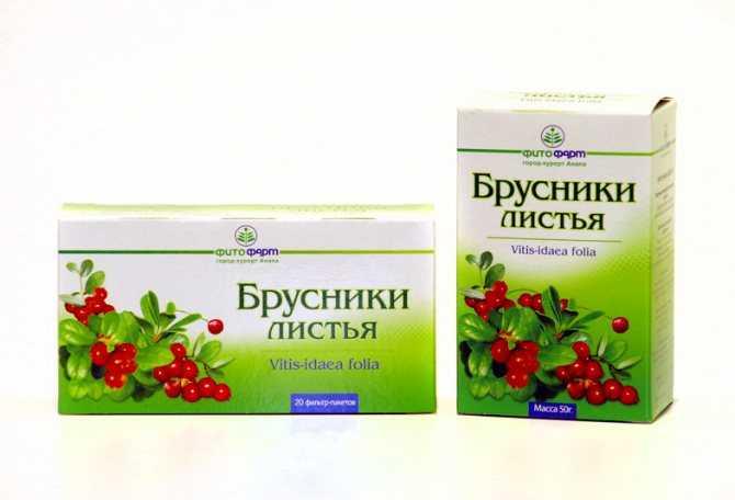 Брусника при беременности: как правильно использовать ягоды и листья / mama66.ru