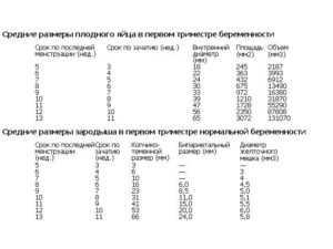 Нормы диаметра плодного яйца по неделям таблица | плодное яйцо на 3,4,5, 6,7, 8, 9 неделе