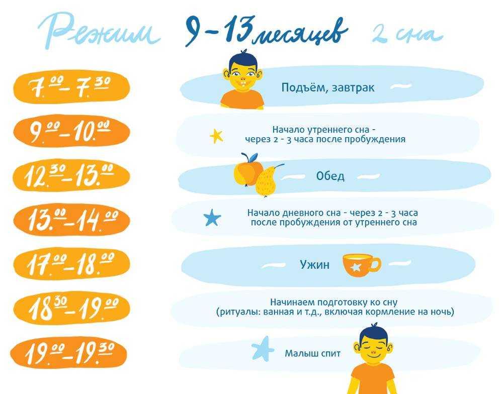 Режим или распорядок дня ребенка по часам в 3 месяца, 4 месяца, в 6 месяцев, 7 месяцев, 9 месяцев, 1 год