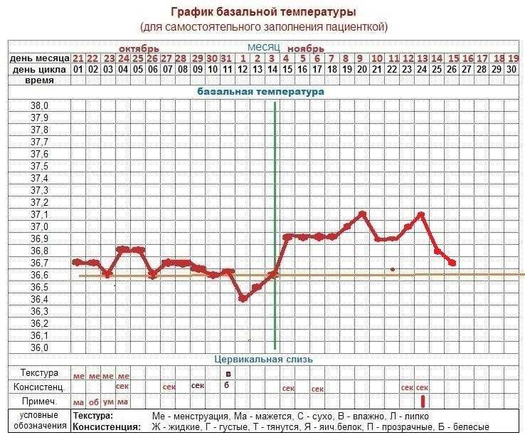 Температура после эко — о чём говорит базальная температура после переноса эмбриона при экстракорпоральном оплодотворении