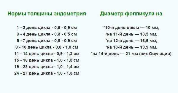 Размер фолликула по дням цикла: рост и нормы в таблице. когда ждать овуляцию при фолликуле 15-16 мм и при каком размере он лопается? почему не растут фолликулы даже при стимуляции?