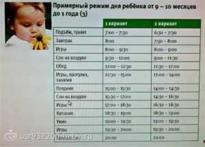 Режим дня ребёнка в 9 месяцев: особенности и советы