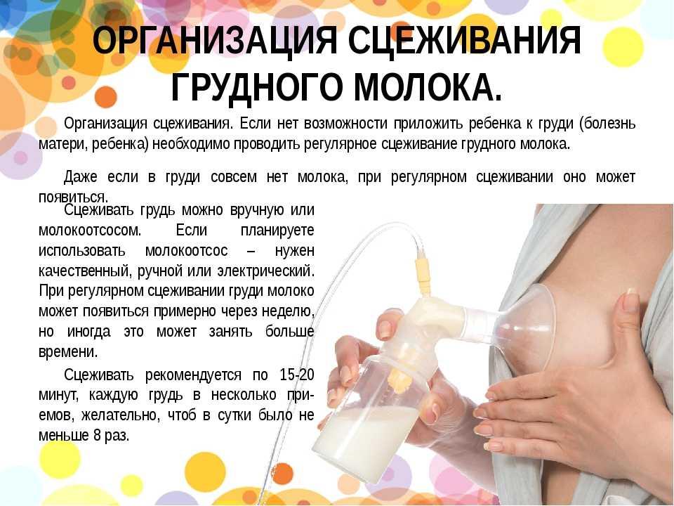 Как правильно сцеживать грудное молоко: как быстро сцедить его руками или молокоотсосом, правила, как это делать первый раз и при застое