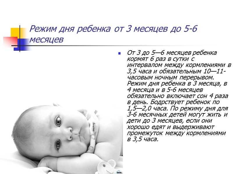 Режим дня 3 месячного ребенка: сколько он должен спать и бодрствовать, режим кормления и прочие вопросы + фото