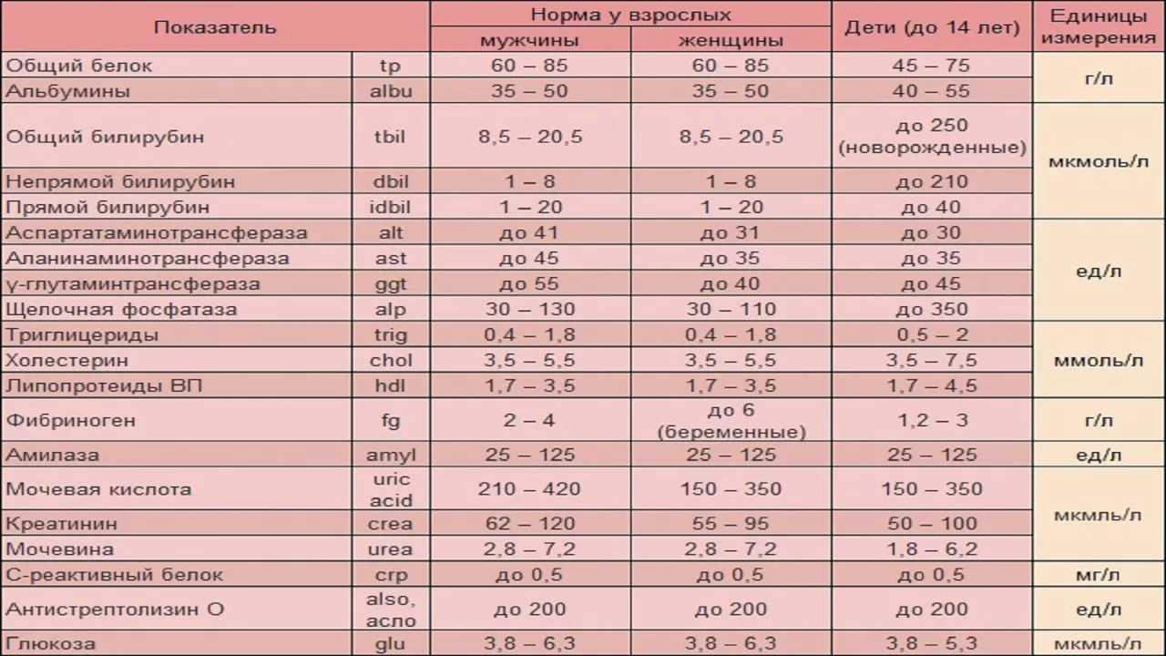 Биохимический анализ крови при беременности - показатели, расшифровка и таблицы норм