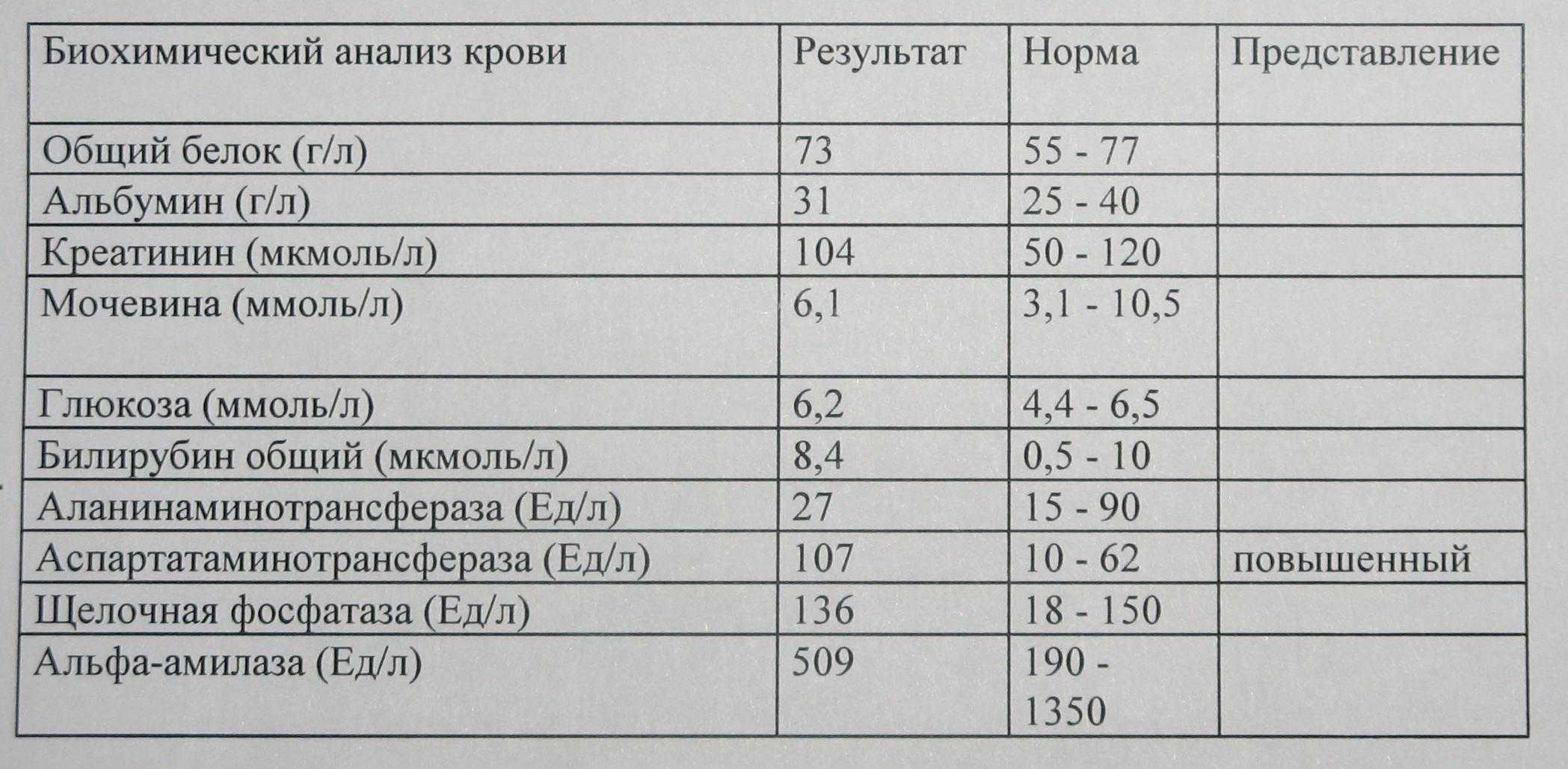 Биохимический анализ крови – норма и характеристики показателей