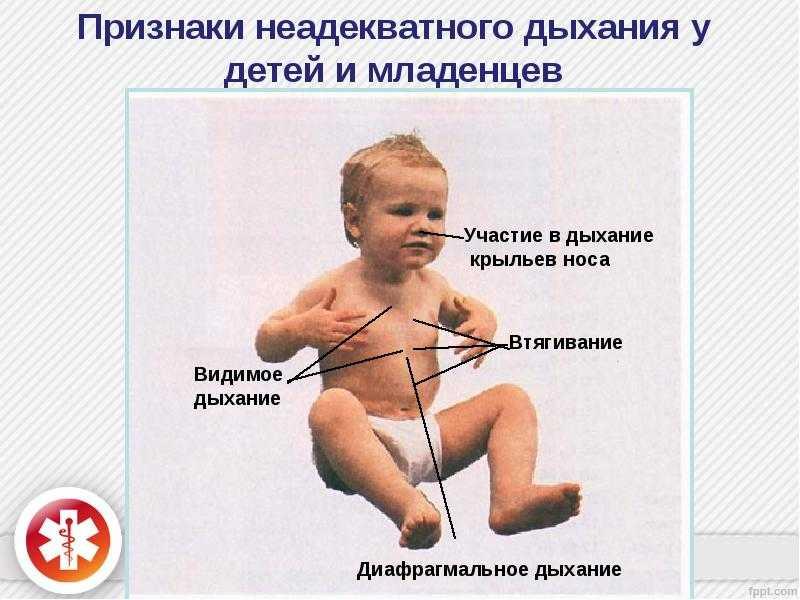 Чем дышит ребенок в утробе матери - особенности физиологии
