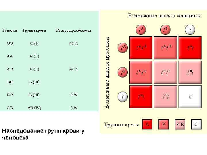 Как наследуется группа крови от родителей к ребнку таблица