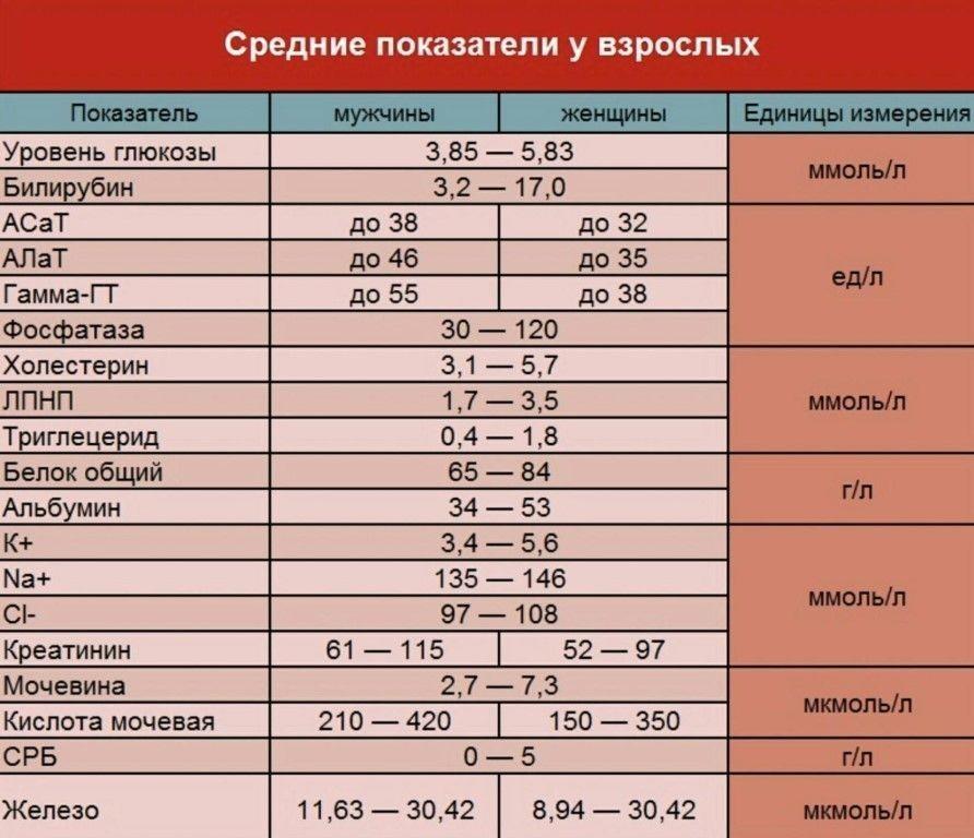 Биохимический анализ крови при беременности: норма, расшифровка «биохимии» у беременных, таблица