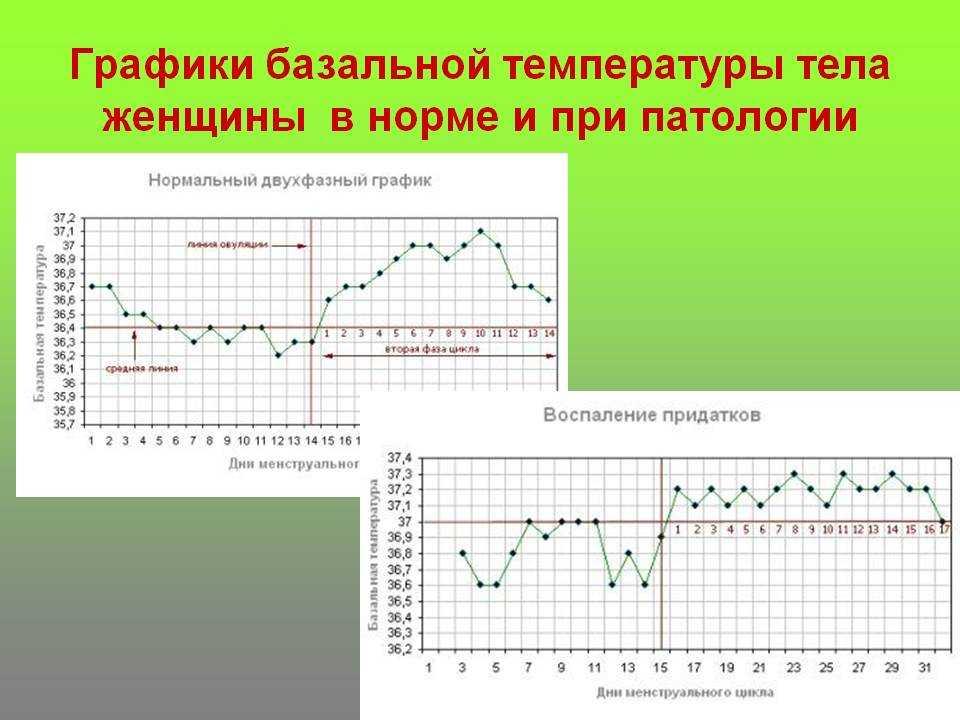 Базальная температура после овуляции: какая должна быть и сколько держится, почему не поднимается, причины снижения