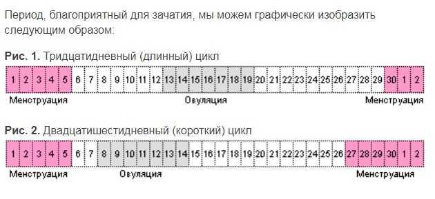 Можно ли забеременеть сразу после месячных на 1 2 3 4-5, 6-7 день