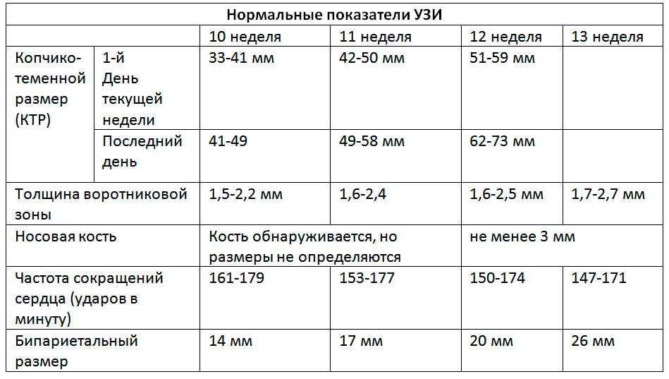 Третий скрининг при беременности: сроки проведения