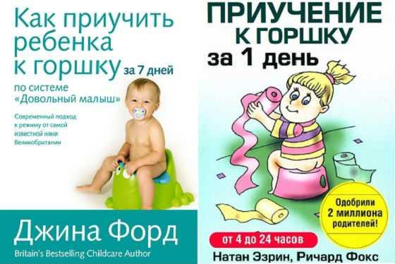 Как приучить ребенка к горшку в 1 год: методы опытных мам и рекомендации комаровского
