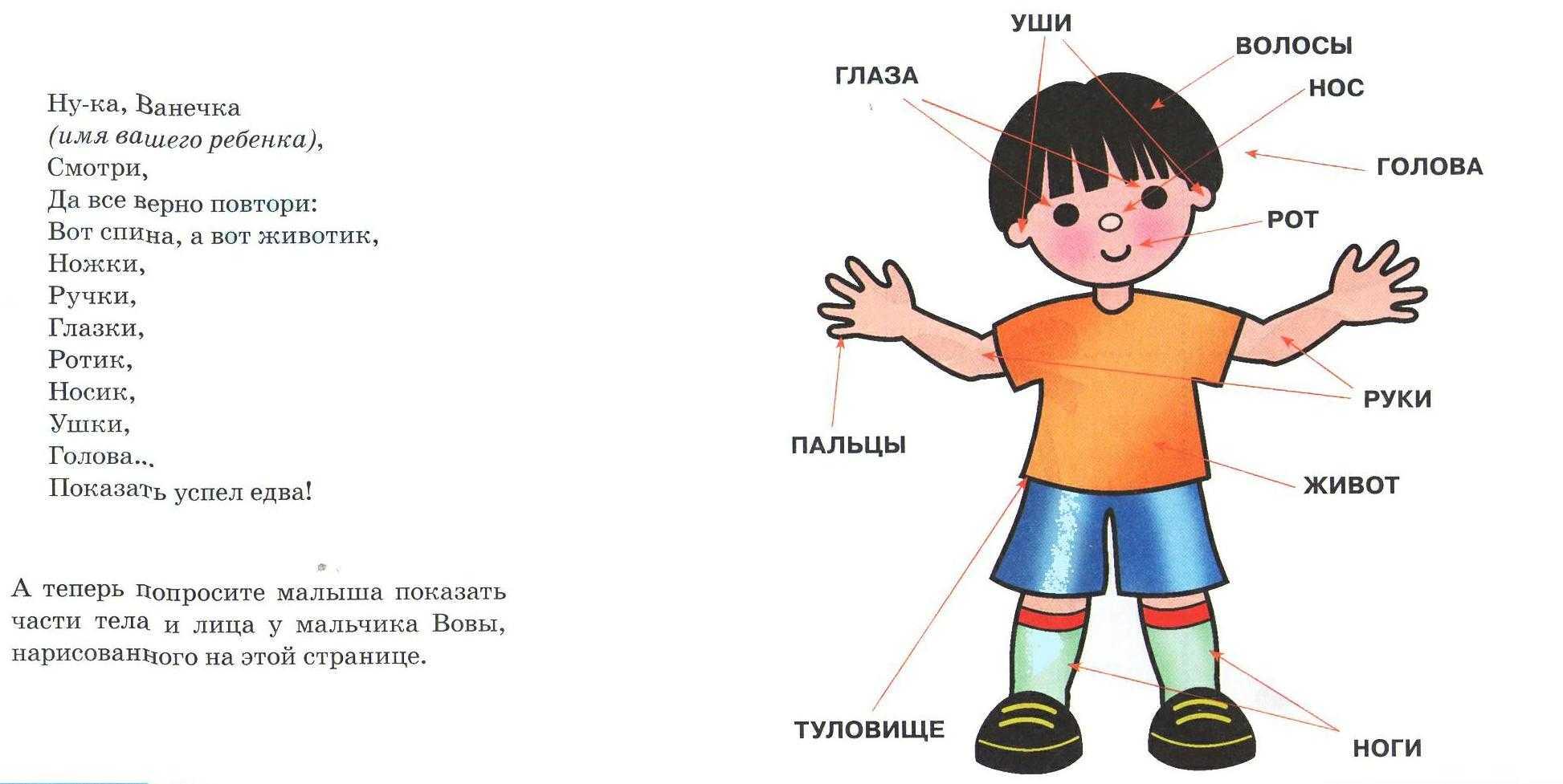 Примеры дидактических игр (подборка). воспитателям детских садов, школьным учителям и педагогам - маам.ру